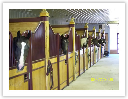Horse barns:Stall fronts